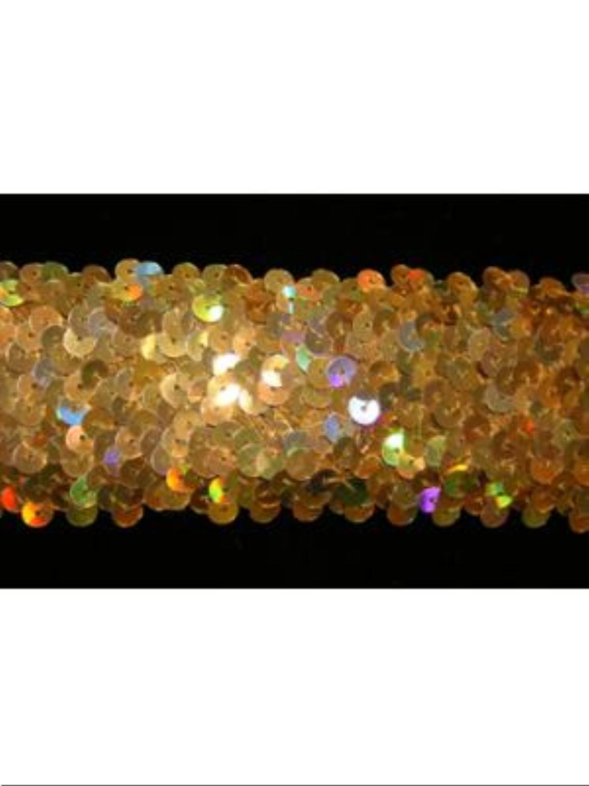 images/products/two_inch_hologram_sequined_trim.jpg
